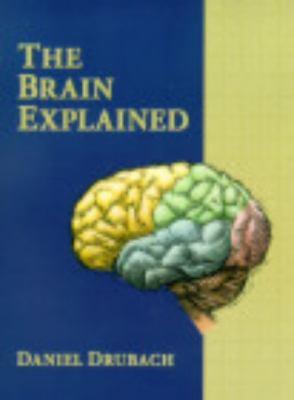 Brain Explained