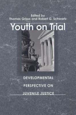 perspectives of youth justice Improving the effectiveness of juvenile justice programs: improving the effectiveness of juvenile justice programs: a new perspective on evidence-based practice i improving the on best practices for juvenile justice-involved youth and the policies that support the practices.