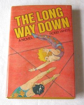 The long way down: A novel