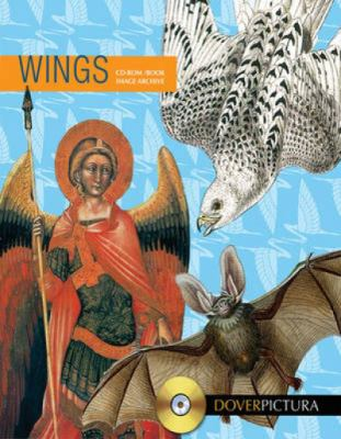 Wings (Pictura)