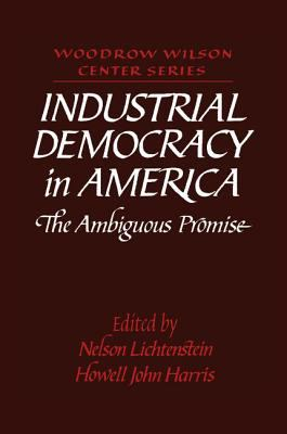 Industrial Democracy in America The Ambiguous Promise