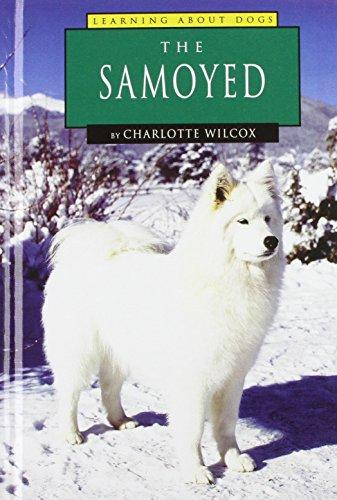 The Samoyed (Learning about Dogs)