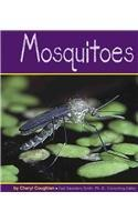 Mosquitoes (Insects)