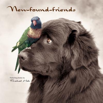 New-Found Friends