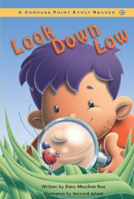 Look Down Low