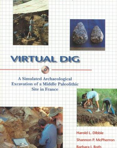 Virtual Dig: A Simulated Archaeological Excavation of a Middle Paleolithic Site in France