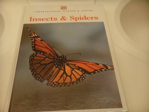 Insects & Spiders (Understanding Science & Nature)