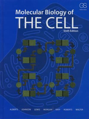 Download ebook Molecular Biology of the Cell 6th Edition pdf