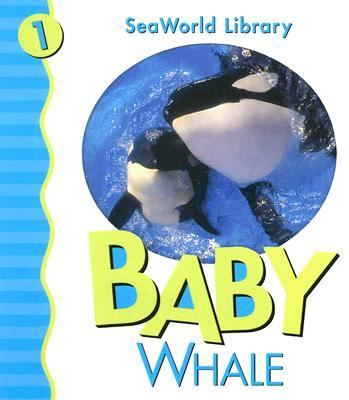 Baby Whale