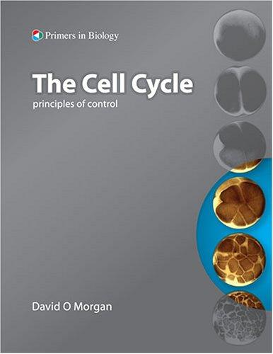 The Cell Cycle: Principles of Control (Primers in Biology) (Primers in Biology)