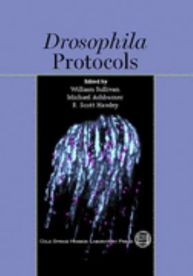 Drosophila Protocols