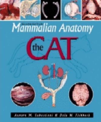 Mammalian Anatomy The Cat