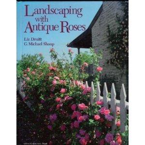 Landscaping with Antique Roses (