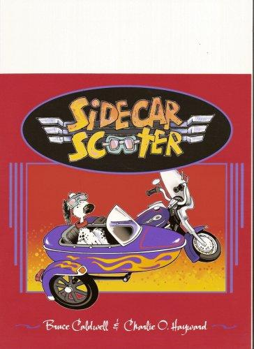 Sidecar Scooter