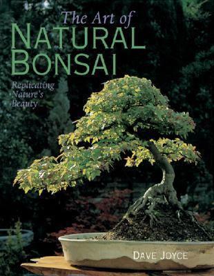 Art of Natural Bonsai Replicating Nature's Beauty