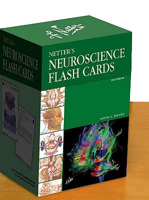 Netter's Neuroscience Flash Cards (Netter Basic Science)