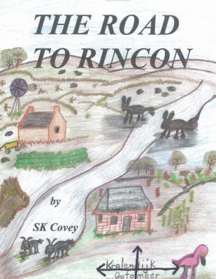 Road to Rincon