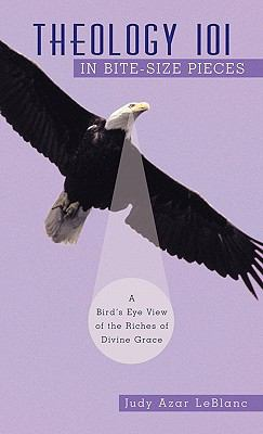 Theology 101 in Bite-Size Pieces : A Bird's Eye View of the Riches of Divine Grace