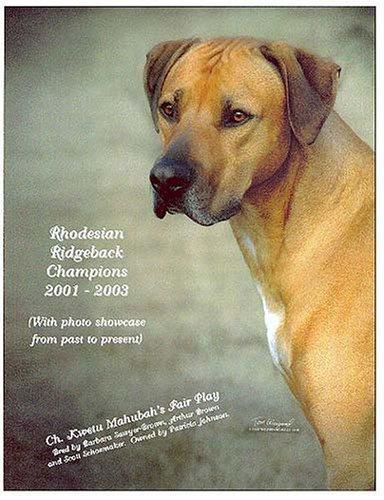 Rhodesian Ridgeback Champions, 2001-2003
