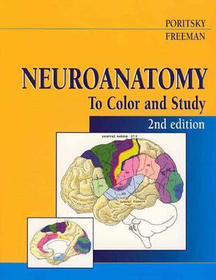 Neuroanatomy To Color and Study