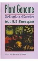 Plant Genome: Biodiversity and Evolution, Vol. 1, Part B: Phanerogams (Higher Groups)