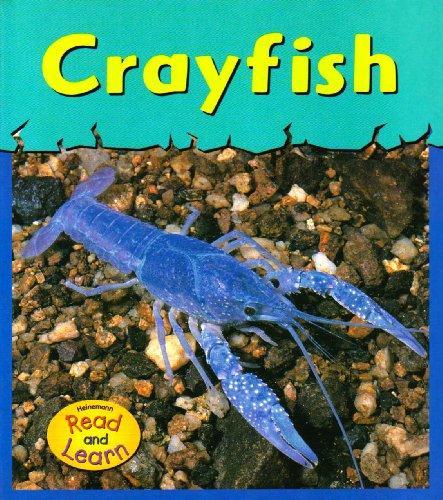 Crayfish (Musty-Crusty Animals)