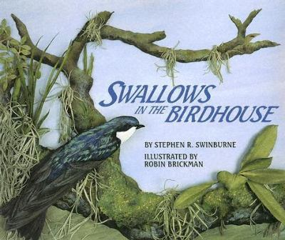 Swallows in the Birdhouse