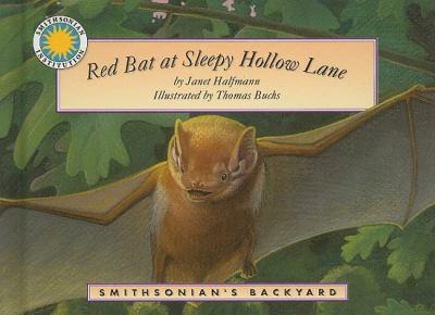 Red Bat at Sleepy Hollow Lane