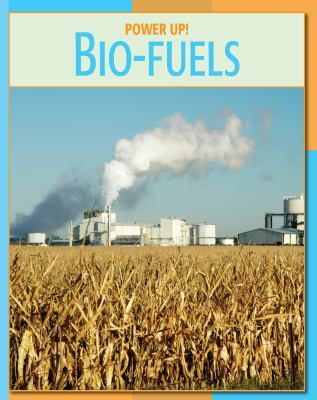 are bio fuels good There are two prominent justifications for biofuel subsidies—to reduce gasoline consumption and carbon dioxide emissions but how much does it cost to achieve these.