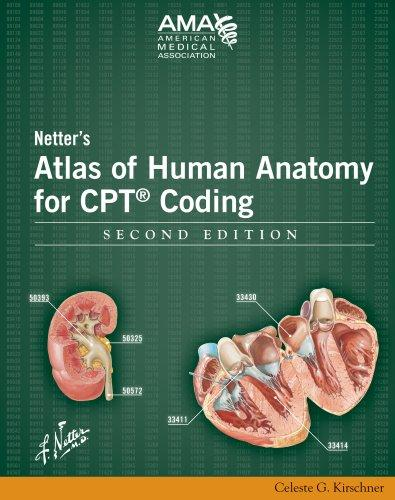 Netter's Atlas of Human Anatomy for CPT Coding, Second Edition