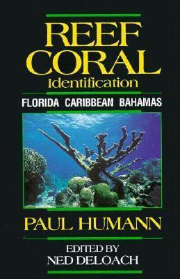 Reef Coral Identification Florida Caribbean Bahamas Including Marine Plants