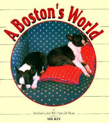 Boston's World
