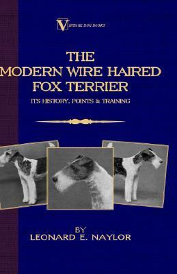 Modern Wire Haired Fox Terrier Its History, Points & Training