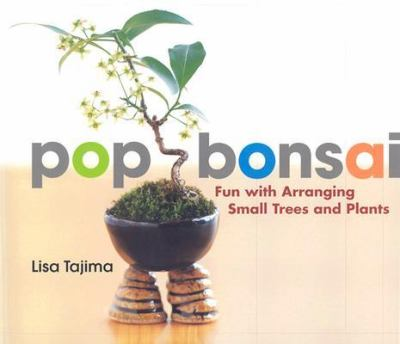 Pop Bonsai Fun With Arranging Small Trees and Plants