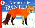 Animals in Winter: Newly Illustrated Edition