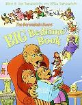 The Berenstain Bears' Big Bedtime