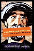 Swallowing Stones A Novel