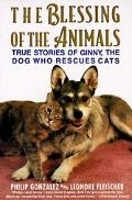 Blessing of the Animals True Stories of Ginny, the Dog Who Rescues Cats