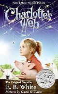 Charlotte's Web Rack