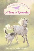 Pony to Remember