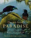 Drawn from Paradise: The Natural History, Art and Discovery of the Birds of Paradise with Ra...
