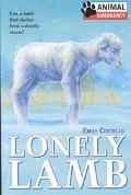 Lonely Lamb