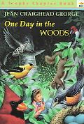 One Day in the Woods
