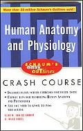 Human Anatomy and Physiology Based on Schaum's Outline of Theory and Problems of Human Anato...