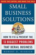 Small Business Solutions How to Fix and Prevent the Thirteen Biggest Problems That Derail Bu...
