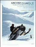 Gold Run Snowmobile, Inc. Computerized Business Simulation for Use With Principles of Accoun...