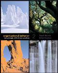 Organizational Behavior Key Concepts, Skills & Best Practices