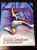 Biol 1334 and 1344 Human Anantomy and Physiology (University of Houston)