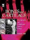 Bones And Cartilage Developmental And Evolutionary Biology