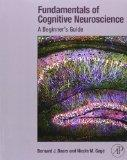 Fundamentals of Cognitive Neuroscience : The Conscious Brain